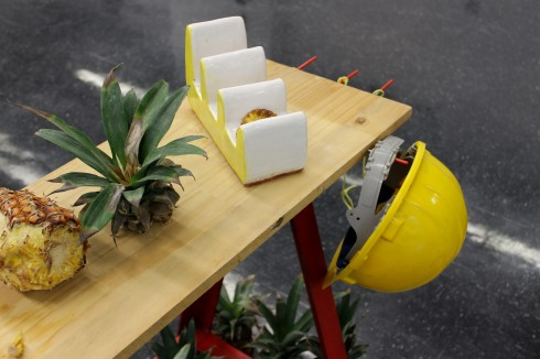 The Pineapple Project-7650